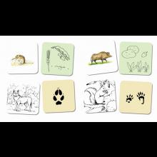 Samtalskort - Skogens djur