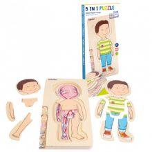 Anatomiskt pussel - Liten pojke