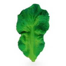 Bitleksak - Grönkålsbladet Kendall