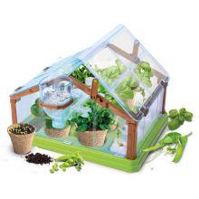 Växthus - Lär dig mer om ekologiskt jordbruk