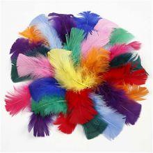 Kalkondun - Blandade färger, 50 gr.