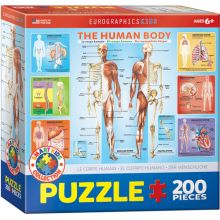 Pussel - kroppen, 200 bitar