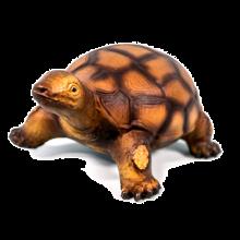 Sköldpadda i naturgummi