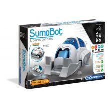 SumoBot - Roboten som aldrig faller omkull