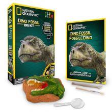 Utgrävning av dinosauriefossiler