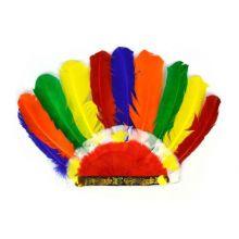 Utklädning - Indiansk Fjäderkrona