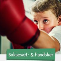 Boxnings-set & handskar